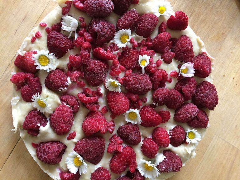 Himbeer Cashewcreme Kuchen Vegan Rohvegan Rezept Vamily De