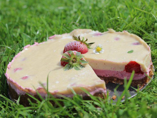 Erbeer-Cashew-Eiskuchen beim Picknick auf der Wiese