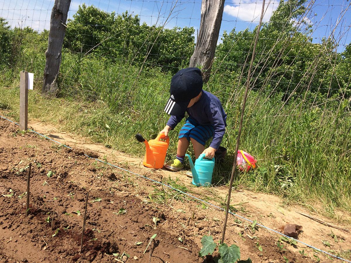 Kind hilft beim gärtnern