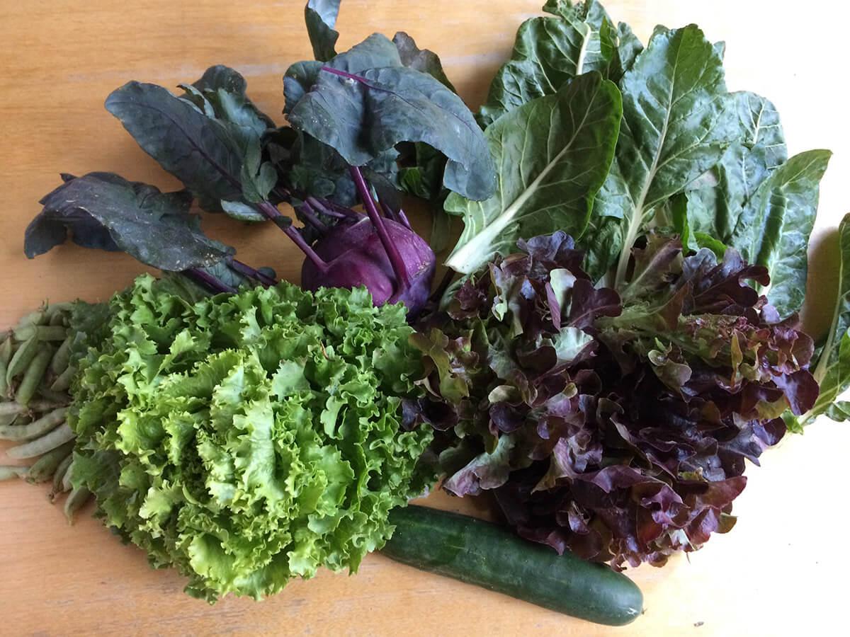 Meine Gemüse auf dem Küchentisch