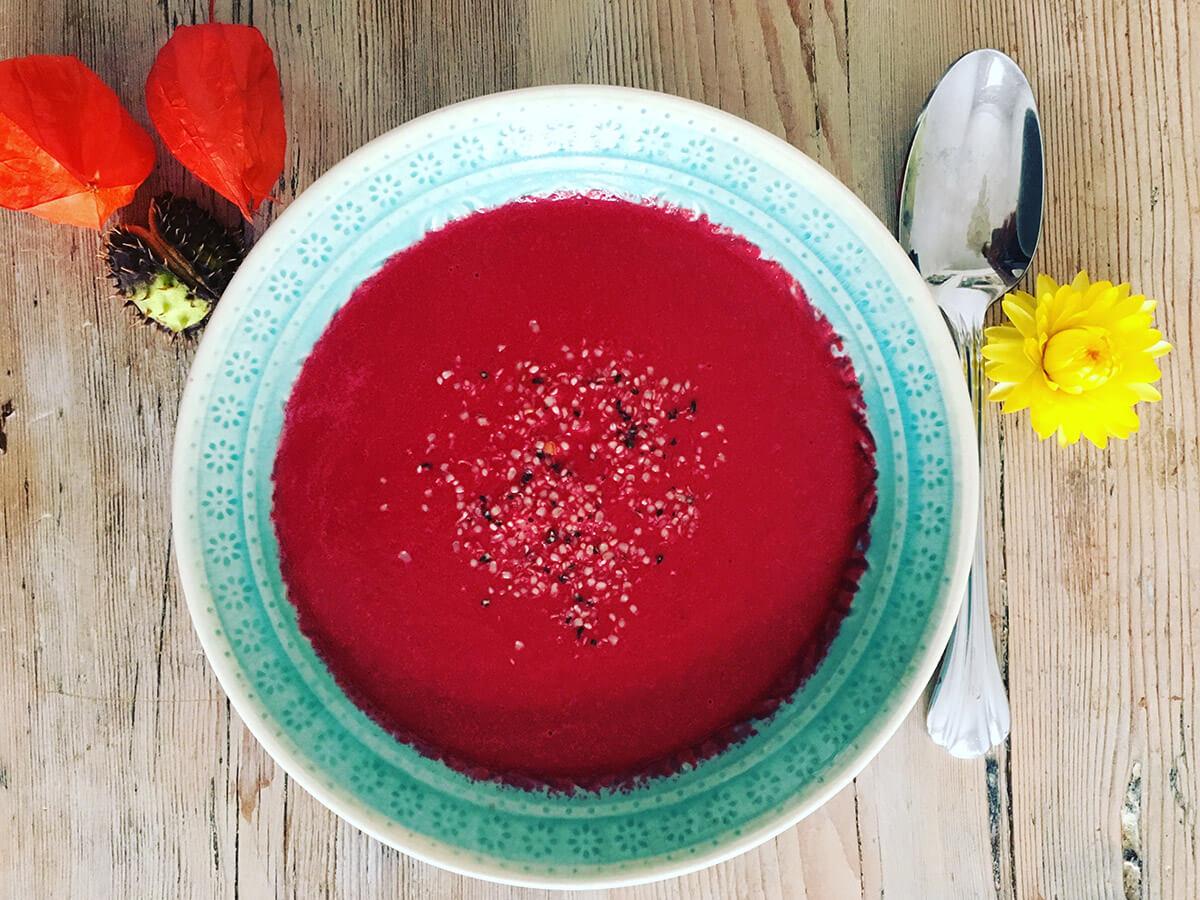 Suppe mit dem Omniblend gemixt