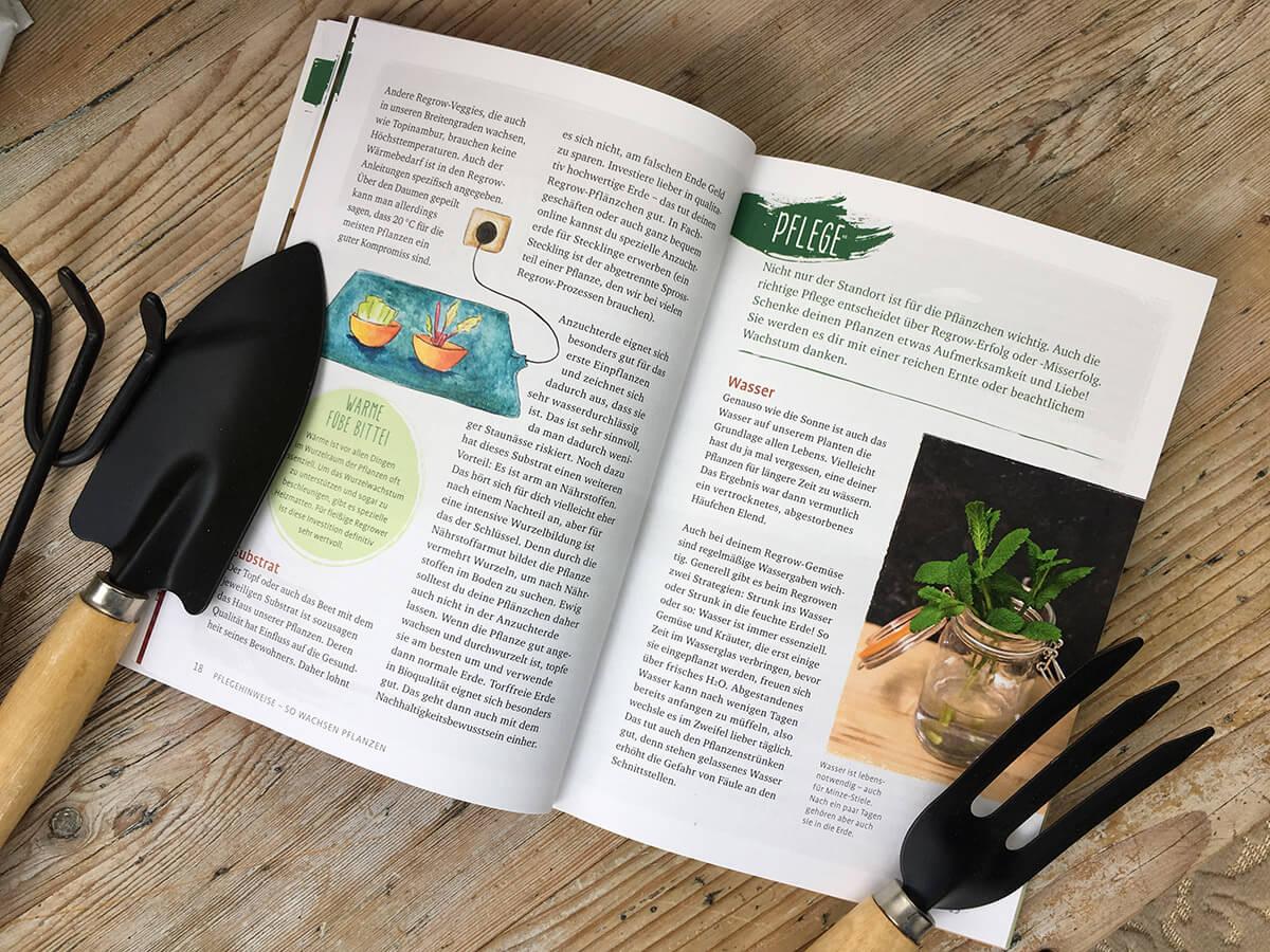 Regrow your veggie Blick ins Buch
