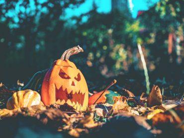 vegan halloween feiern